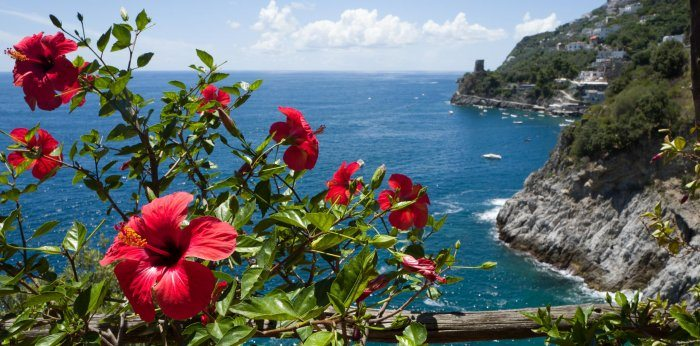 View from Villa la Madonnina with flowers